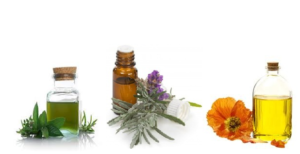 Eight Best Natural Oils For Fast Hair Growth