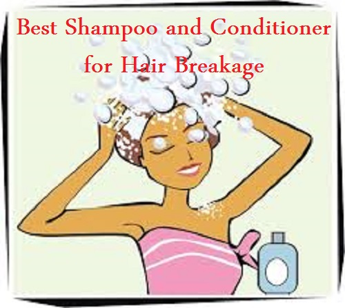 Best Shampoo and Conditioner for Hair Breakage